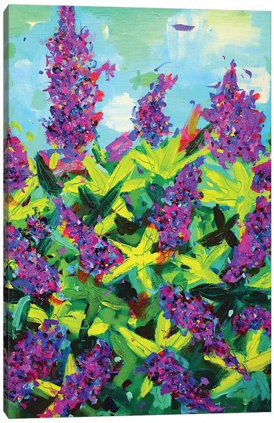 Buddleia Canvas Art Print