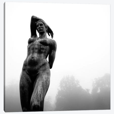 Lady In The Mist Canvas Print #DVB35} by Dave Bowman Canvas Wall Art