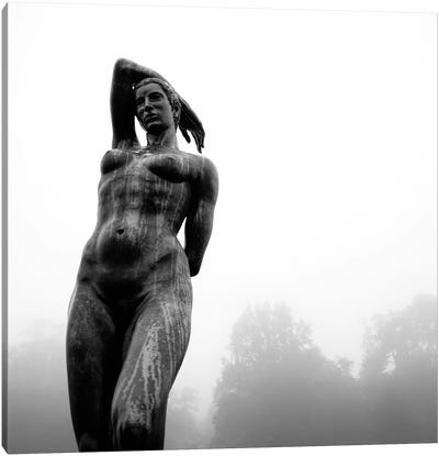 Lady In The Mist Canvas Art Print