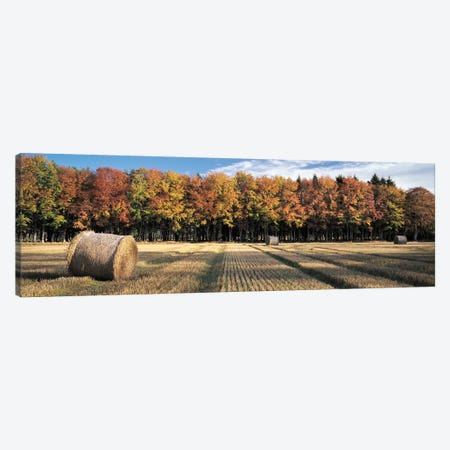 Autumn In The Fields Canvas Print #DVB3} by Dave Bowman Canvas Art