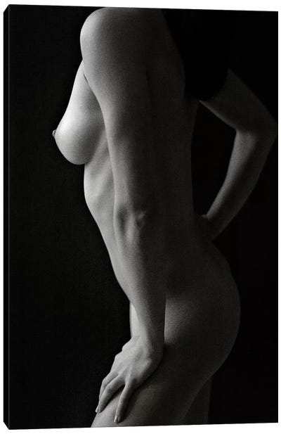 Nude Study VIII Canvas Art Print