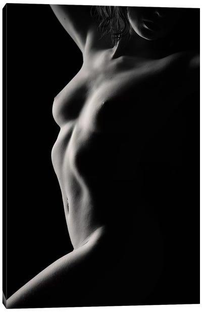 Nude Study XIII Canvas Art Print