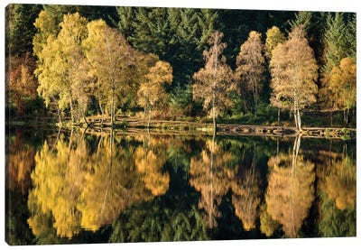 Autumn On Glencoe Lochan Canvas Art Print