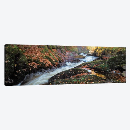 River Esk Rapids Canvas Print #DVB69} by Dave Bowman Canvas Wall Art