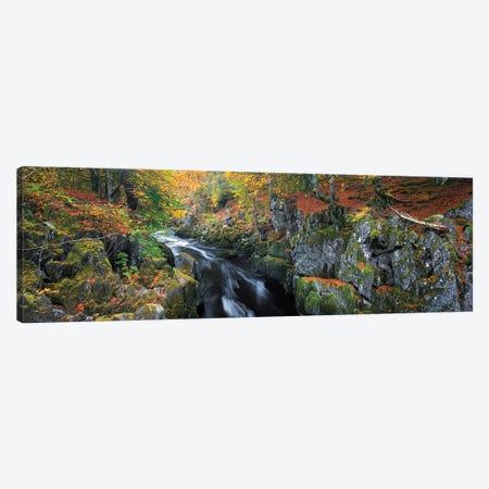 Autumn On River Esk Canvas Print #DVB7} by Dave Bowman Canvas Art Print