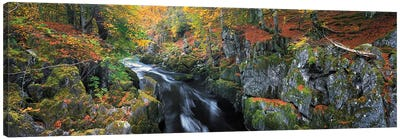 Autumn On River Esk Canvas Art Print