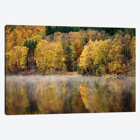 Autumn On River Tummel Canvas Print #DVB8} by Dave Bowman Canvas Wall Art