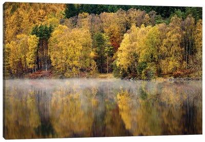 Autumn On River Tummel Canvas Art Print
