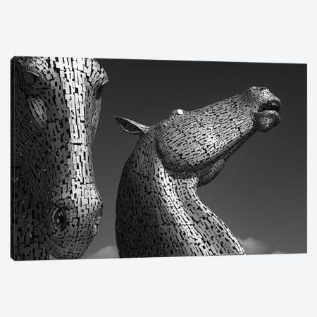 The Kelpies Canvas Print #DVB90} by Dave Bowman Canvas Print