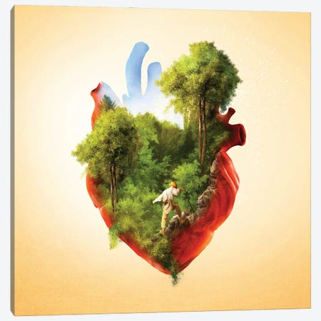 Exploring Heart Canvas Print #DVE109} by Diogo Verissimo Canvas Artwork