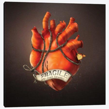 Fragile Heart Canvas Print #DVE112} by Diogo Verissimo Art Print