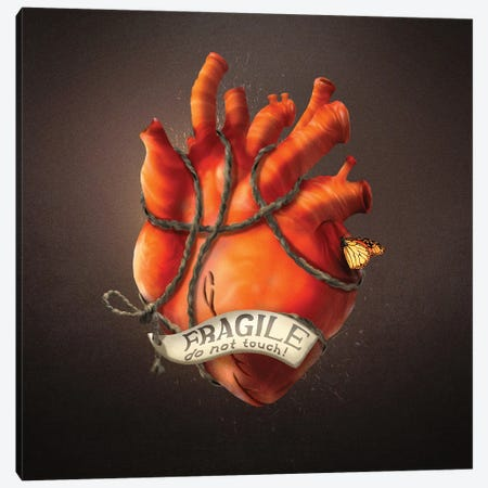 Fragile Heart Canvas Print #DVE112} by Diogo Verissimo Art Print