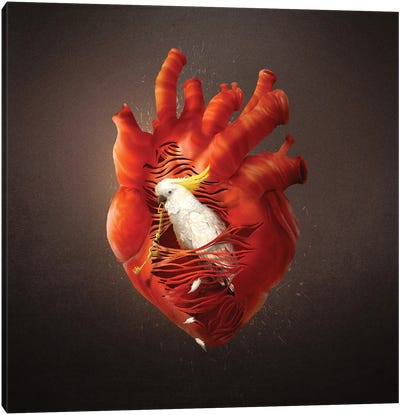 Opening Heart Canvas Art Print