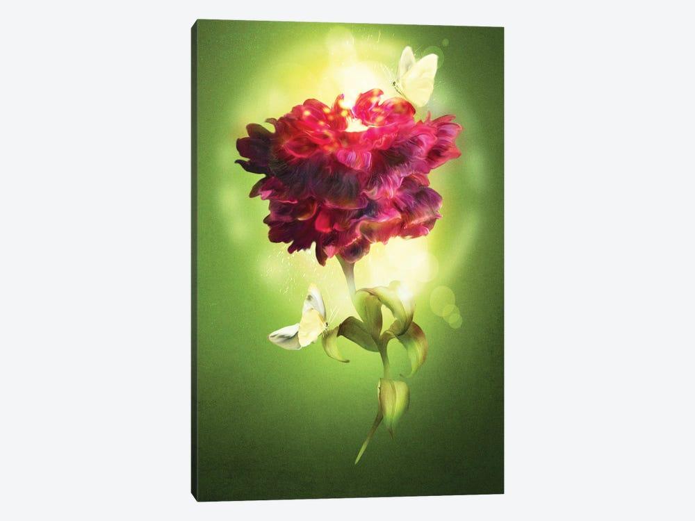 Spring Flower by Diogo Verissimo 1-piece Canvas Art