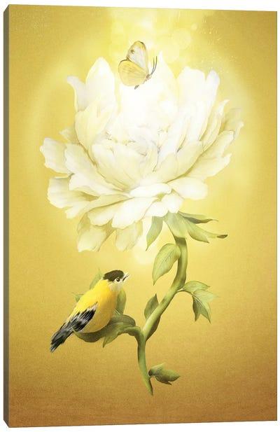 Summer Flower Canvas Art Print