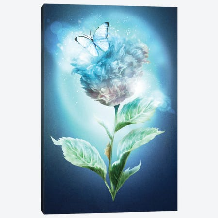 Winter Flower Canvas Print #DVE118} by Diogo Verissimo Canvas Print