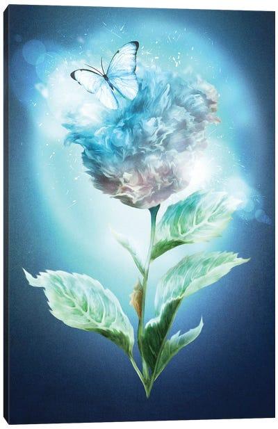 Winter Flower Canvas Art Print
