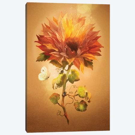 Autumn Flower Canvas Print #DVE119} by Diogo Verissimo Canvas Art Print