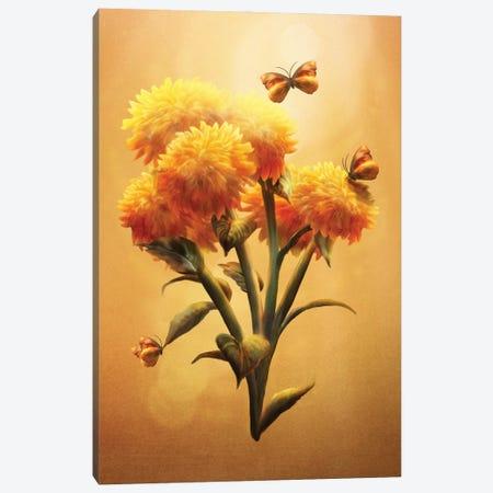 Sunset Bloom Canvas Print #DVE125} by Diogo Verissimo Art Print