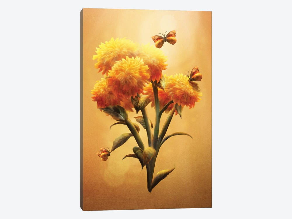 Sunset Bloom by Diogo Verissimo 1-piece Canvas Artwork