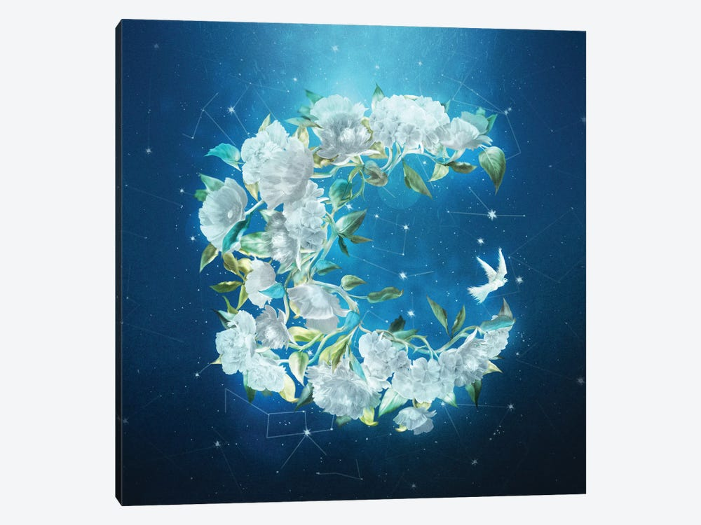 Moonlight Flowers by Diogo Verissimo 1-piece Art Print