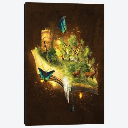 Enchanted Book Canvas Print #DVE138} by Diogo Verissimo Art Print