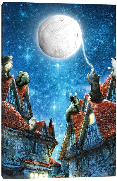 Feline Dreams Canvas Art Print