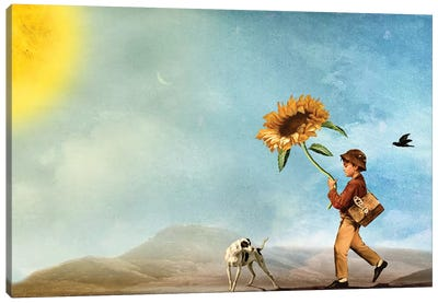 Follow The Sun Canvas Art Print
