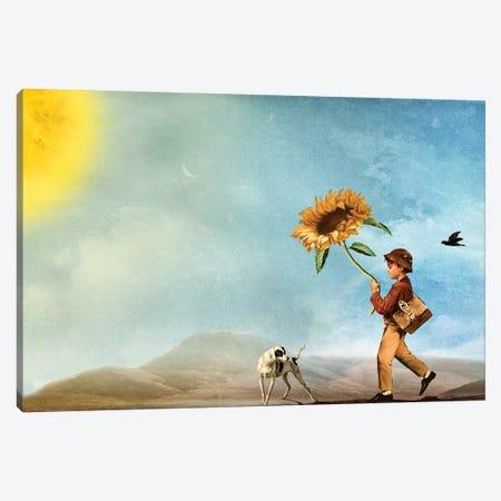 Follow The Sun Canvas Print #DVE27} by Diogo Verissimo Canvas Wall Art