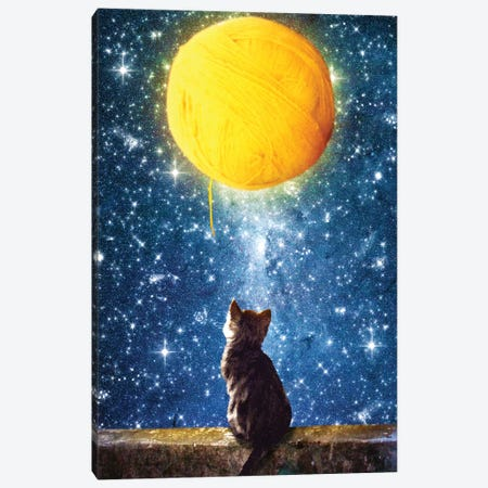 A Yarn Of Moon Canvas Print #DVE2} by Diogo Verissimo Canvas Art Print