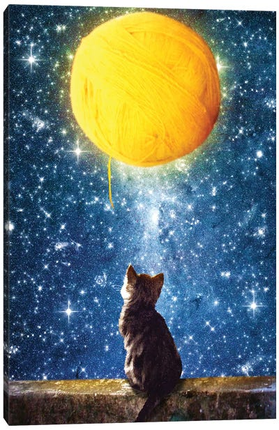 A Yarn Of Moon Canvas Art Print