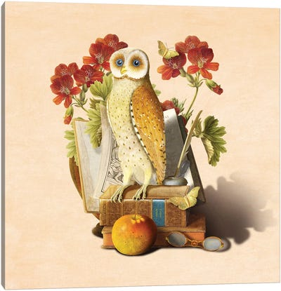 Apprentice Owl Canvas Art Print