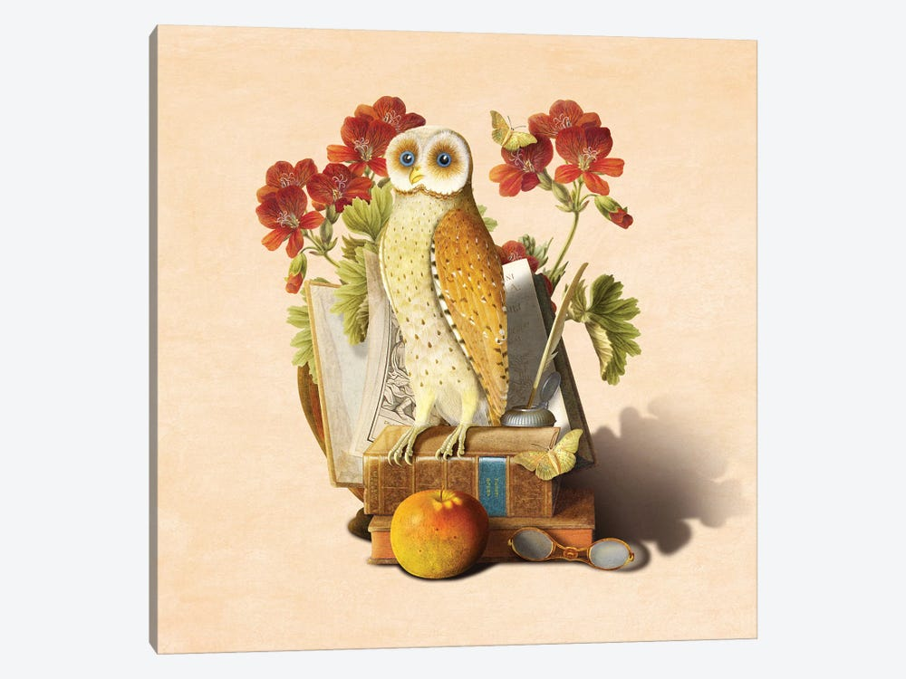 Apprentice Owl by Diogo Verissimo 1-piece Art Print