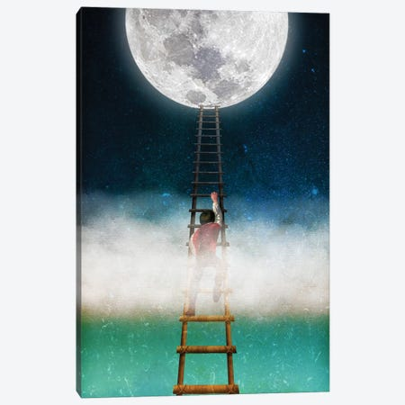 Reach For The Moon II 3-Piece Canvas #DVE52} by Diogo Verissimo Canvas Artwork