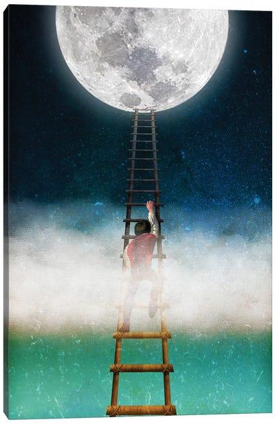Reach For The Moon II Canvas Art Print