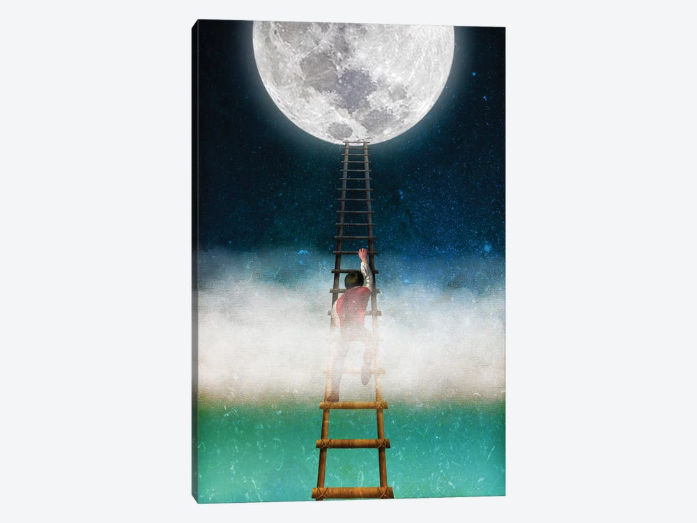 Reach For The Moon II by Diogo Verissimo 1-piece Canvas Wall Art