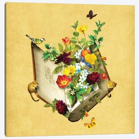 Secret Garden 3-Piece Canvas #DVE55} by Diogo Verissimo Canvas Art Print