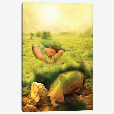 Spring Awakening Canvas Print #DVE57} by Diogo Verissimo Art Print