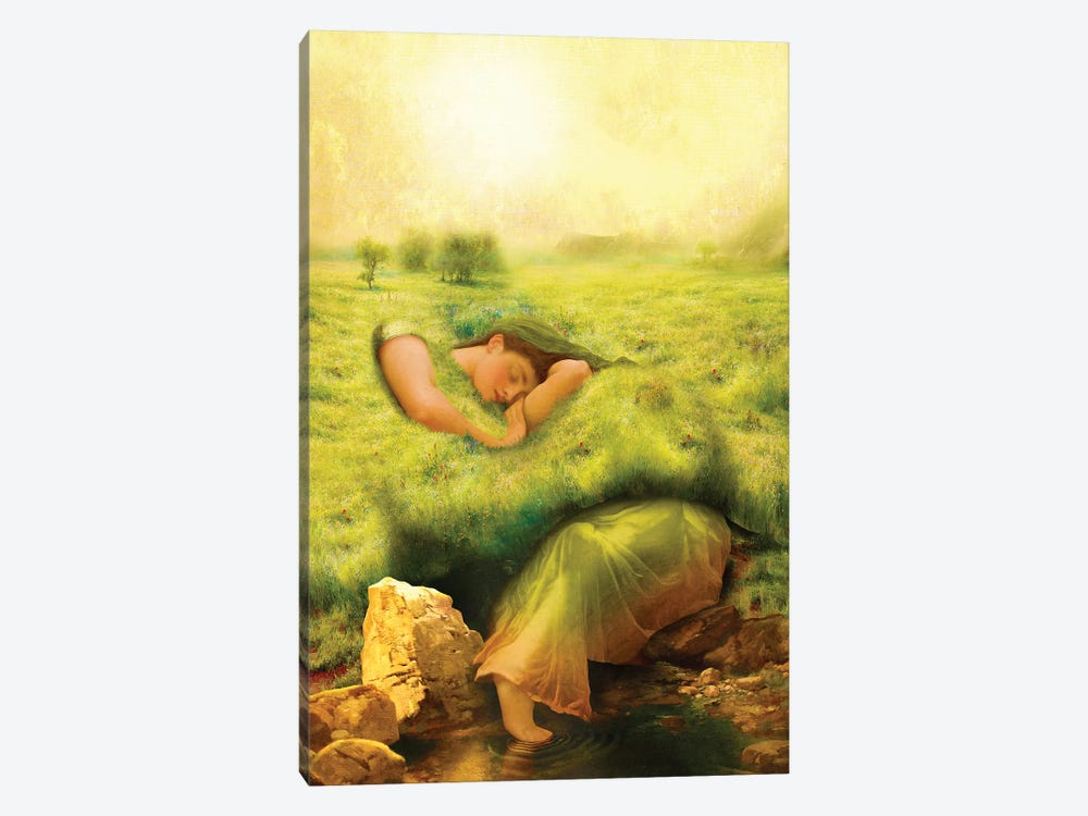 Spring Awakening by Diogo Verissimo 1-piece Canvas Art Print