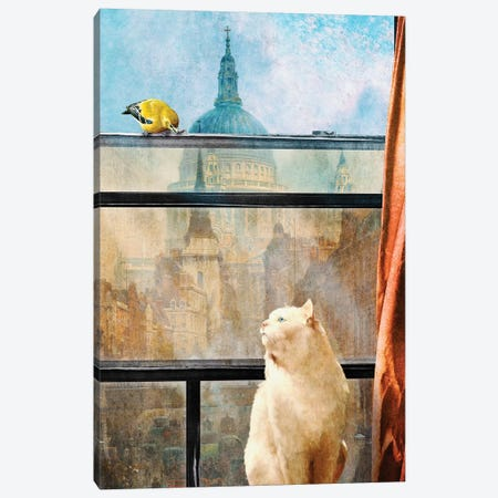 The Bird And The Cat Canvas Print #DVE61} by Diogo Verissimo Art Print