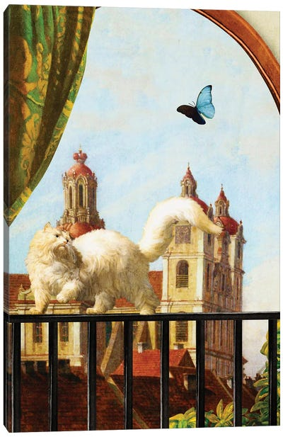 The Butterfly And The Cat Canvas Art Print