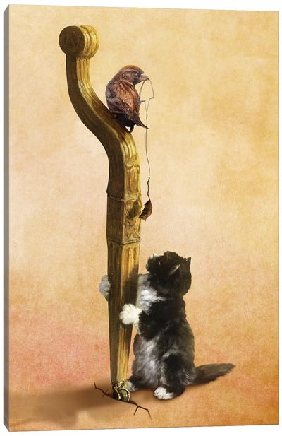 The Cat, The Bird, And The Mouse Canvas Art Print