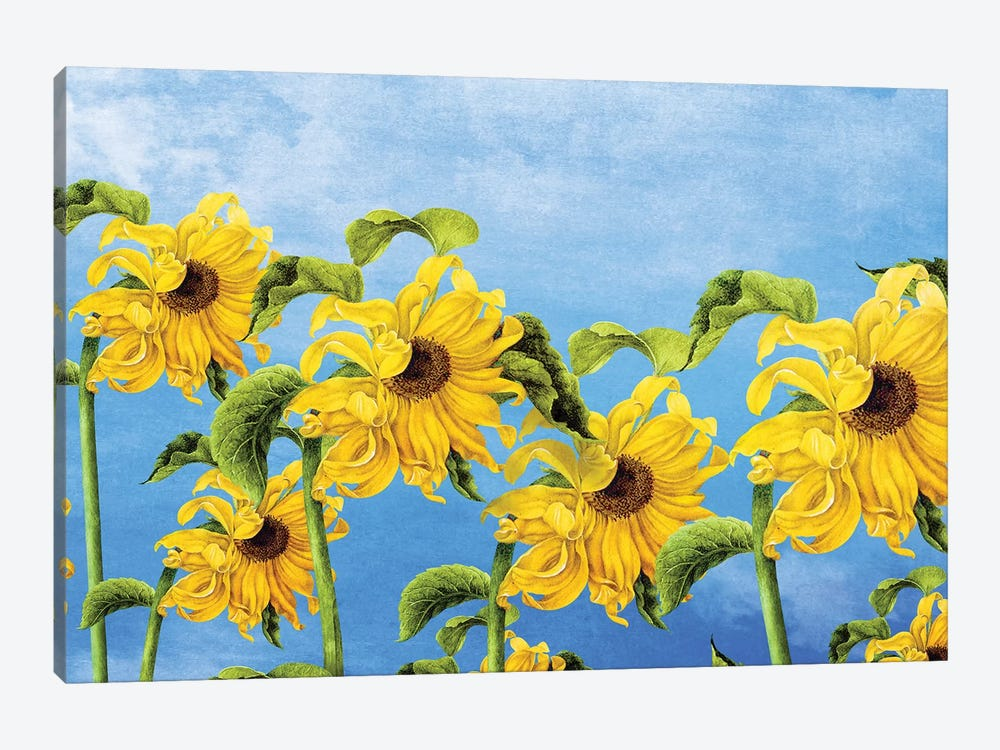 Where The Sunflowers Grow by Diogo Verissimo 1-piece Art Print