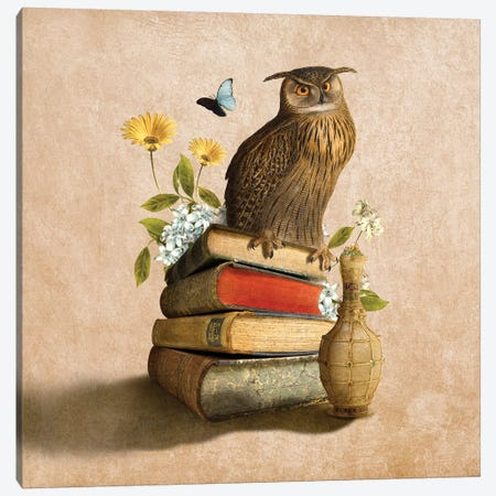 Wise Owl Canvas Print #DVE84} by Diogo Verissimo Canvas Artwork