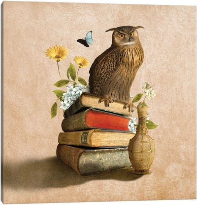 Wise Owl Canvas Art Print