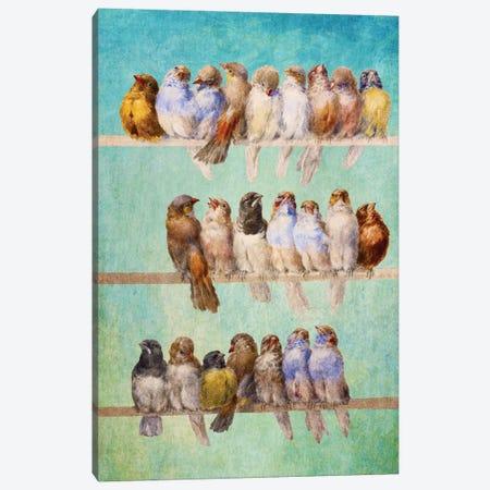 Birds Birds Birds Canvas Print #DVE9} by Diogo Verissimo Canvas Print