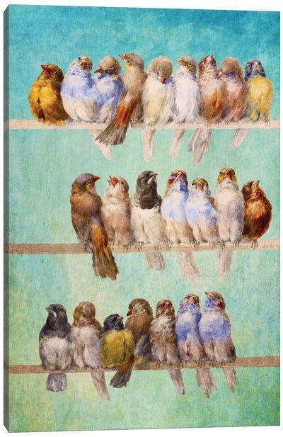 Birds Birds Birds Canvas Art Print