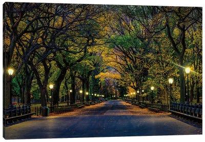 Central Park Magic Canvas Art Print