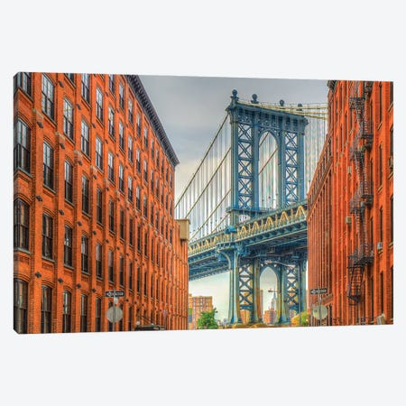 Dumbo Canvas Print #DVG115} by David Gardiner Art Print