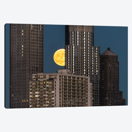 Peeping Moon Canvas Print #DVG153} by David Gardiner Canvas Wall Art